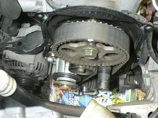P1060682.JPG